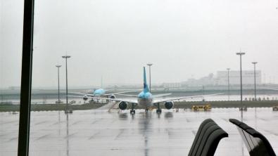 주기중인 비행기들.